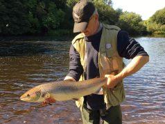 Remis à l'eau après un photo vite #CPRsavesfish