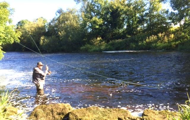 A la pêche du saumon sur la belle rivière Nore