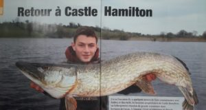 Brochet Sandre Article