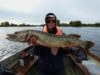Alain, pêcheur au Melview Fishing Lodge à Longford, avec son brochet