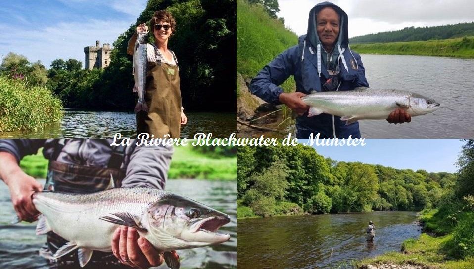 La pêche du saumon sur la riviere Blackwater de Munster