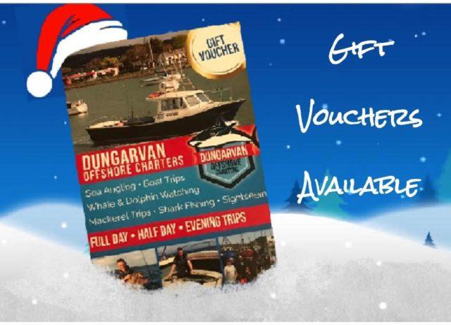 Offrez à quelqu'un une expérience unique d'une journée avec Dungarvan Offshore Charters en 2020