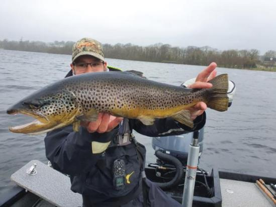 Une belle truite de Lough Sheelin