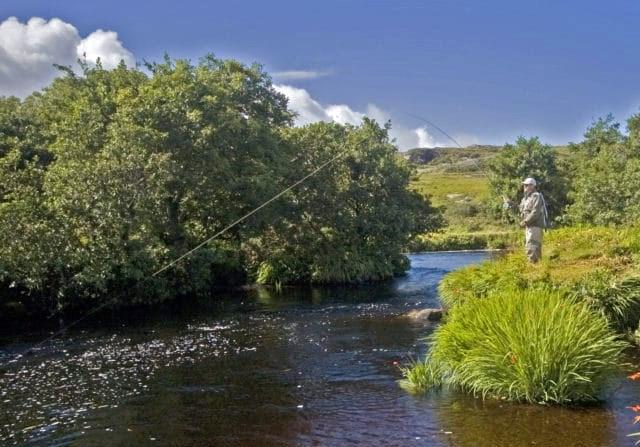 Saumon Irlandais sur le Dawros