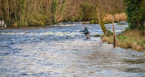 A la pêche sur le Mill Pool, rivière Drowes