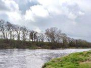 Un joli parcours de pêche sur la rivière Feale