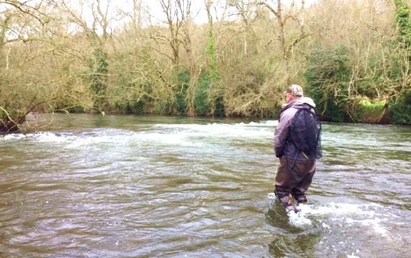 A la pêche de la truite sur la rivière Kings, un affluent de la rivière Nore