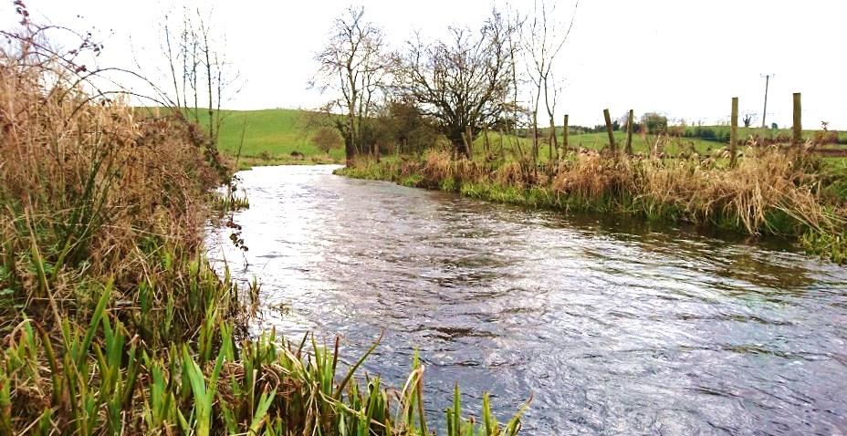 La belle rivière Fane dans le nord-est d'Irlande
