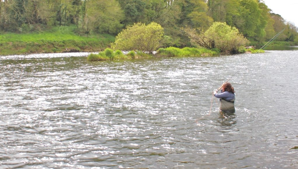 La belle rivière Blackwater au sud du pays