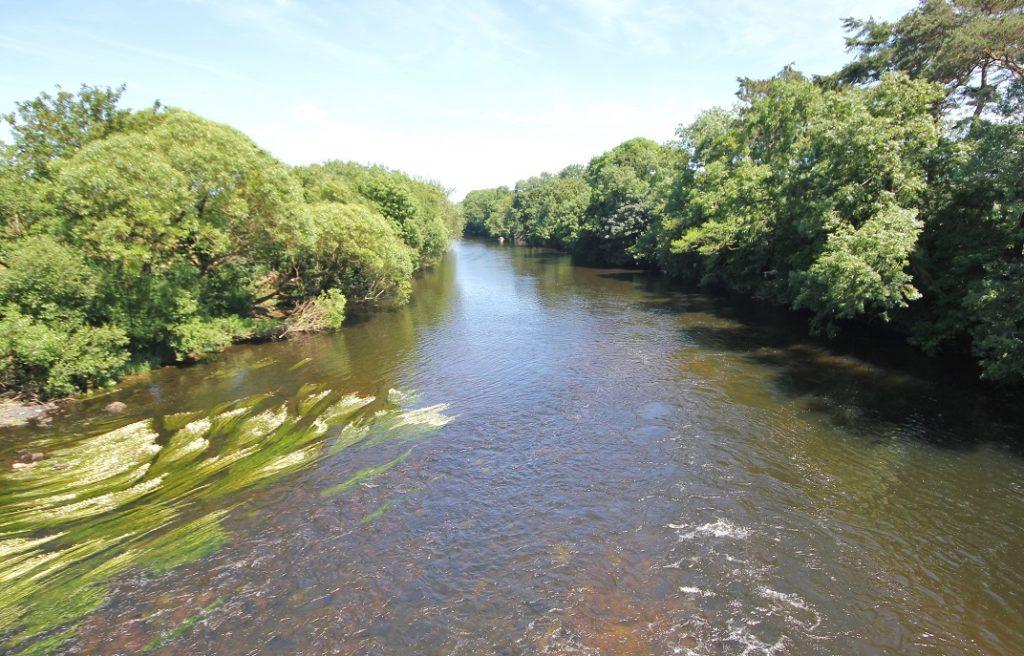 La rivière Blackwater de Munster, en eau bas.