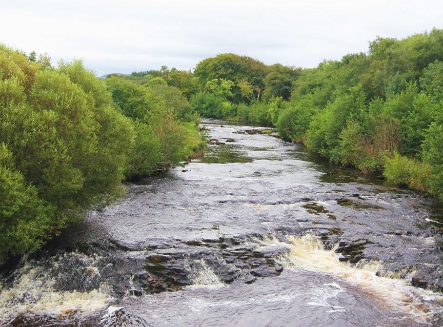 La rivière Duff
