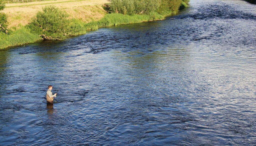 La riviere Nore dans la domaine de Mount Juliet