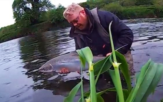 La pêche du saumon en Irlande, la rivière Suir.