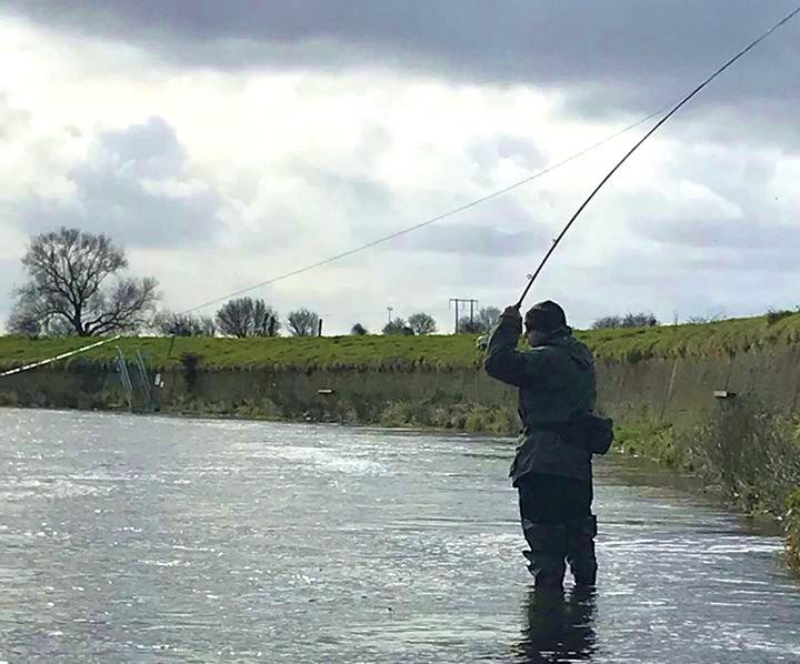 La pêche du saumon à la mouche sur la rivière Feale, Irlande.