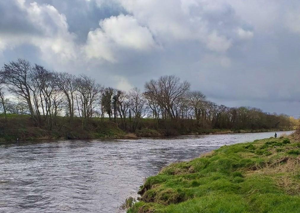 La peche en Irlande, la rivière Feale