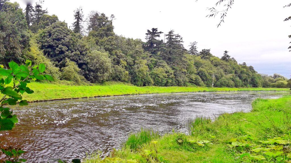La rivière Boyne, vallée de la Boyne, Co. Meath, Irlande.
