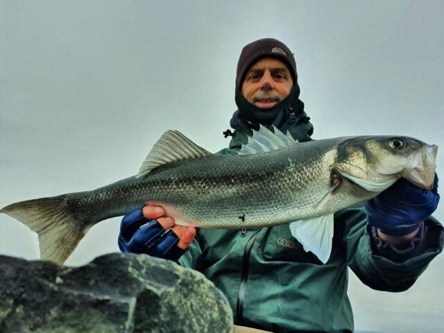 La pêche du bar en Irlande