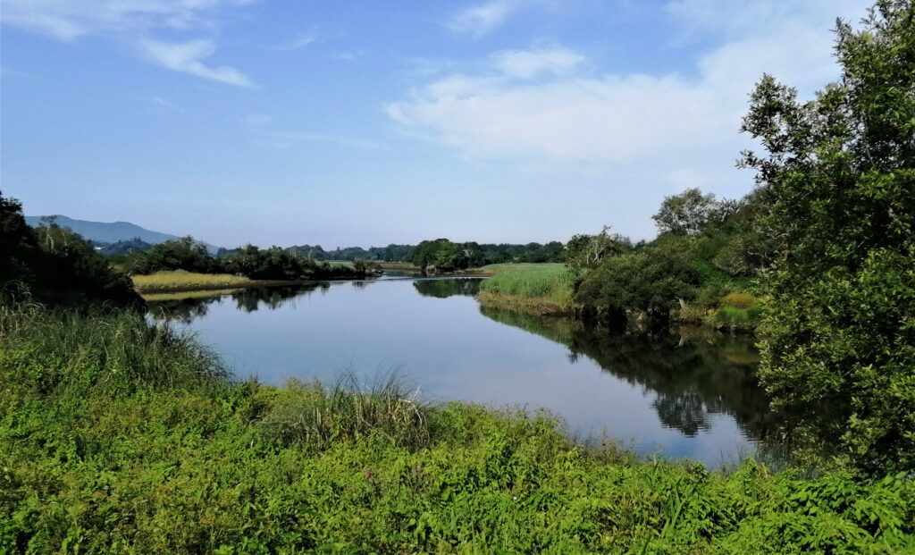 La rivière Roughty dans le Kerry