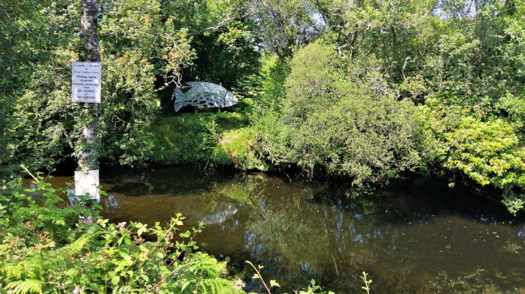 La rivière Coomhola dans le Cork