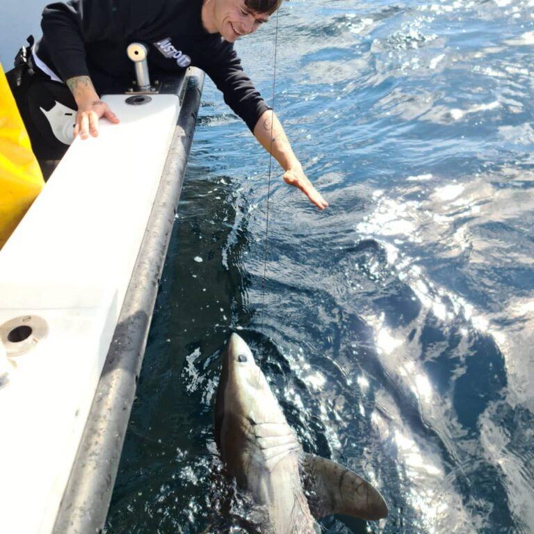 La pêche en mer dans le Galway en Irlande