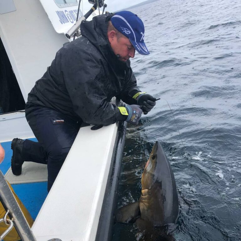 Une journée de pêche inoubliable dans la baie de Galway en Irlande