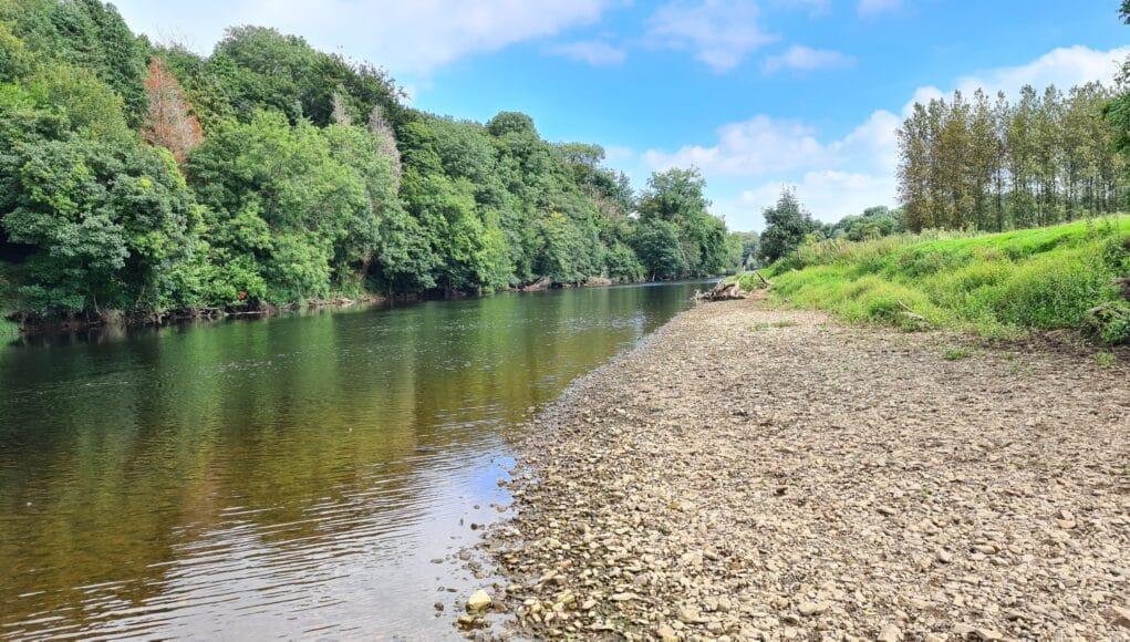 La rivière Blackwater de Munster